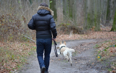 Owner and dog on a jog